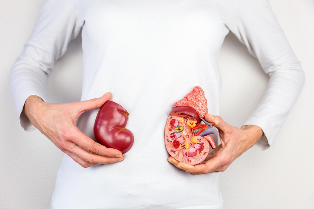 Диагностика хронического пиелонефрита: назначение врача, особенности проведения обследования, показания, противопоказания, выявленные заболевания и их лечение
