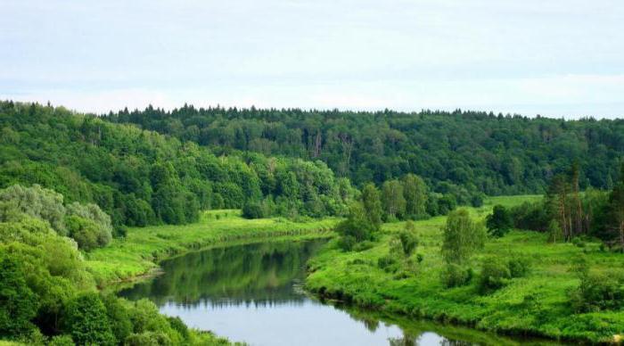 разнообразие природы родного края Калужская область