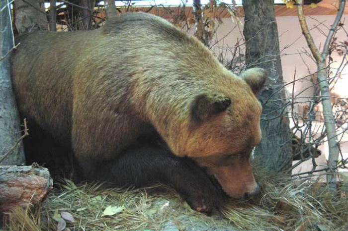 природа родного края Калужская область
