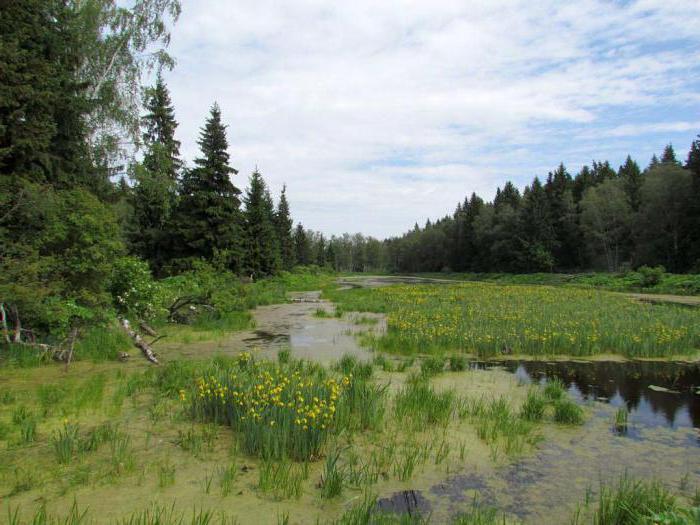 природа Калужской области