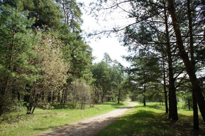 особенности природы Калужской области
