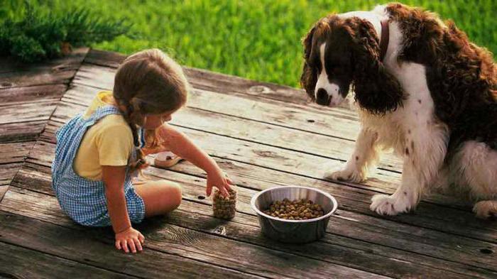 можно ли давать собаке супрастин при аллергии