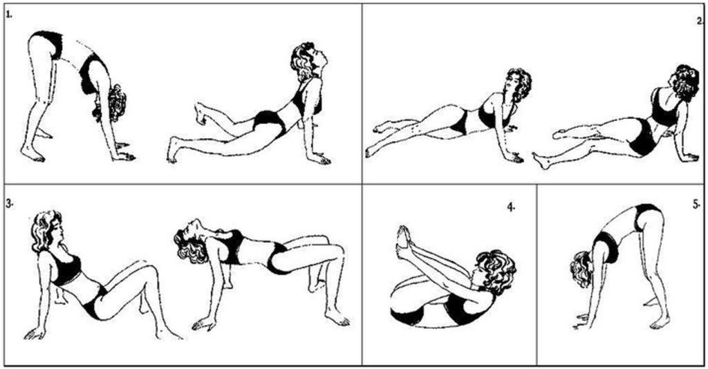 Упражнения брэгга для позвоночника с картинками
