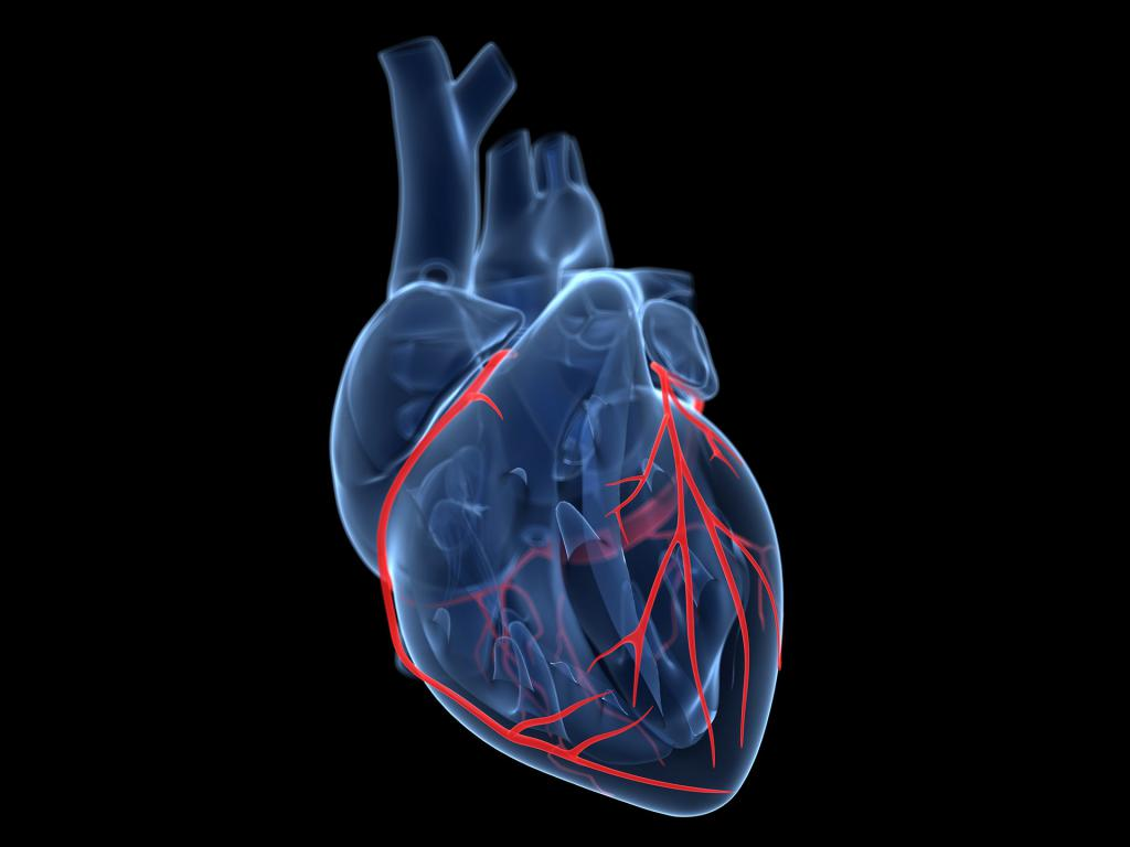 treating cardiac disease Cad doctors and your treatment plan who treats cad your heart doctor will usually use an electrocardiogram (ecg) test, exercise stress test, or cardiac angiogram to diagnose cad.
