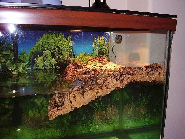 Островок для аквариума своими руками фото 451