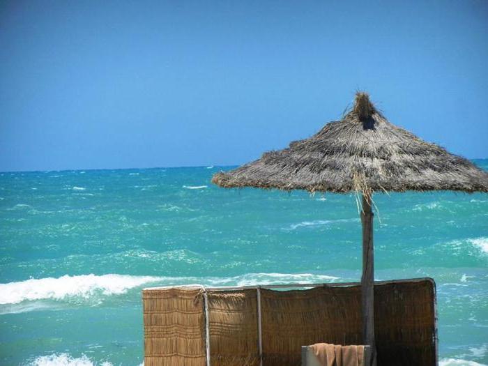 venice beach 3 джерба