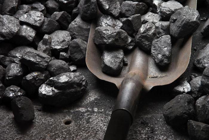 Полезные ископаемые Чехии кратко