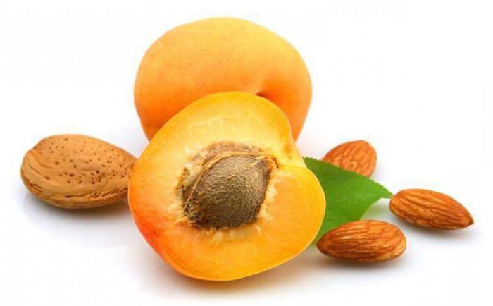 рак лечение рака абрикосовыми косточками