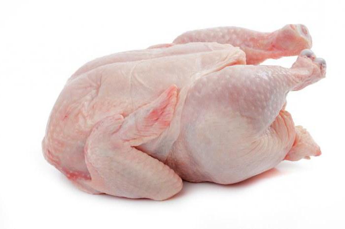аллергия на курицу у собак симптомы