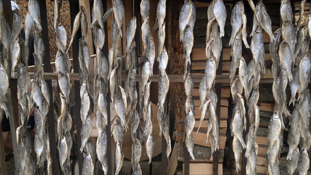 Fish: drying process