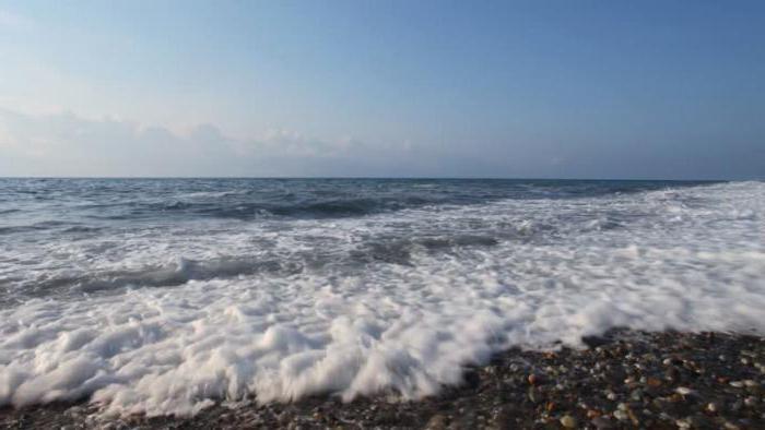 аллергия на соленую воду в море фото
