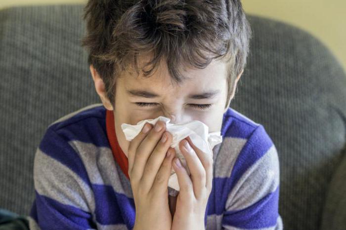 диета при аллергии на пыль у детей