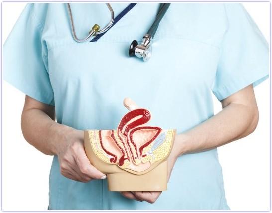 Рак вульвы прогноз 2