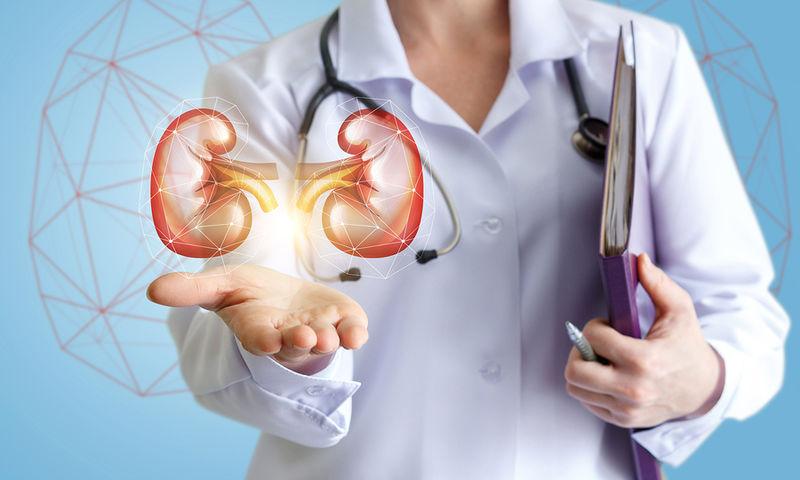 Kidneys under control
