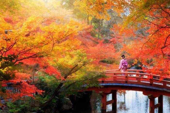 осень в японии