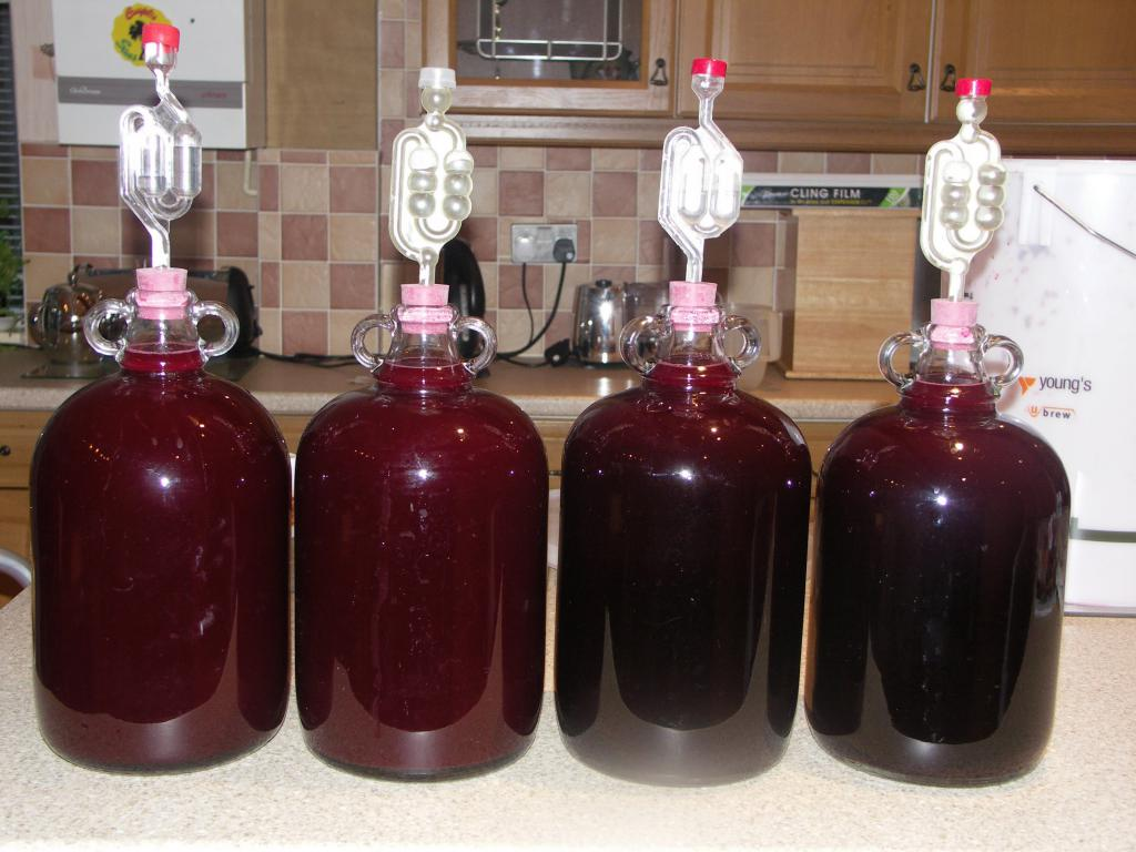 Сливовое вино в домашних условиях простой рецепт 116