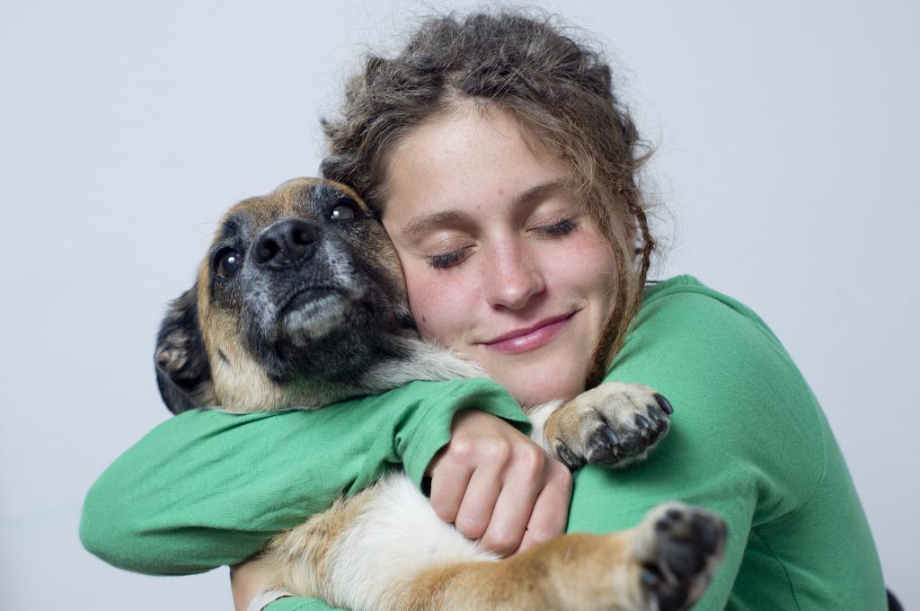 Любое взаимодействие с животными во сне, по мнению сонника, отображает взаимоотношения спящего человека с окружающими.