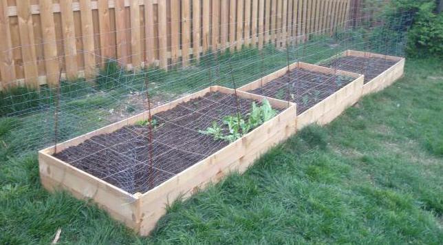 сосновые опилки в огороде польза или вред
