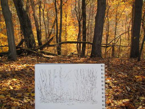Golden autumn: how to draw with pencil, paint, gouache
