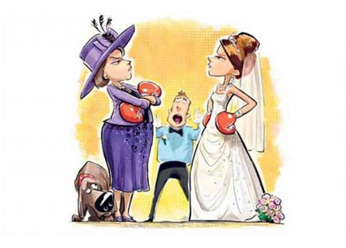 Картинки про свекровь и невестку прикольные, праздником навруз