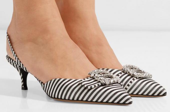 Feline heel