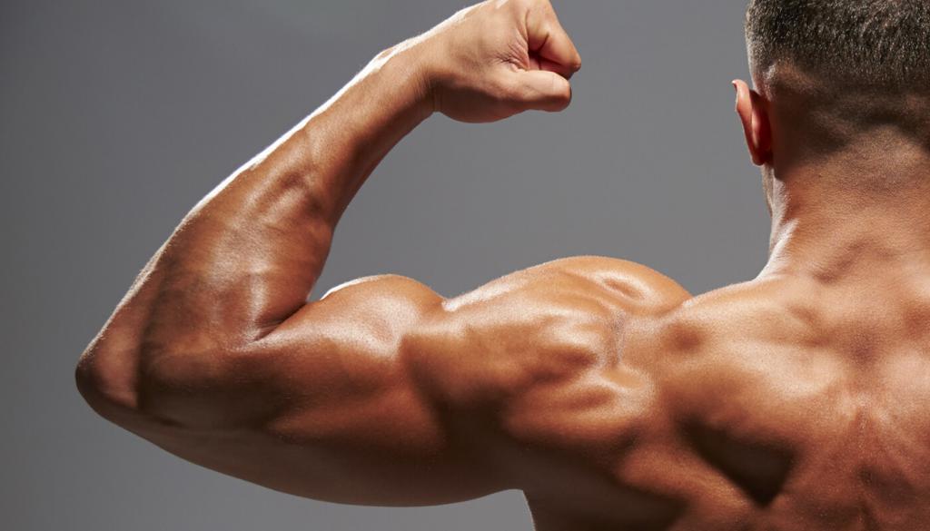 искали, фотографии отсутствие мышц используют оформлении ванных