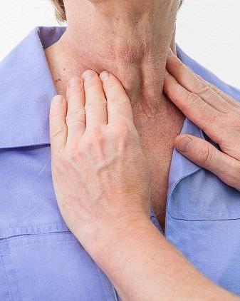 щитовидная железа место расположения