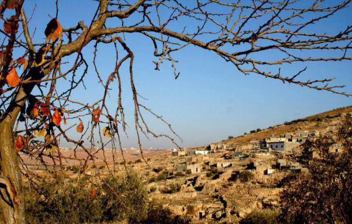 границы палестины
