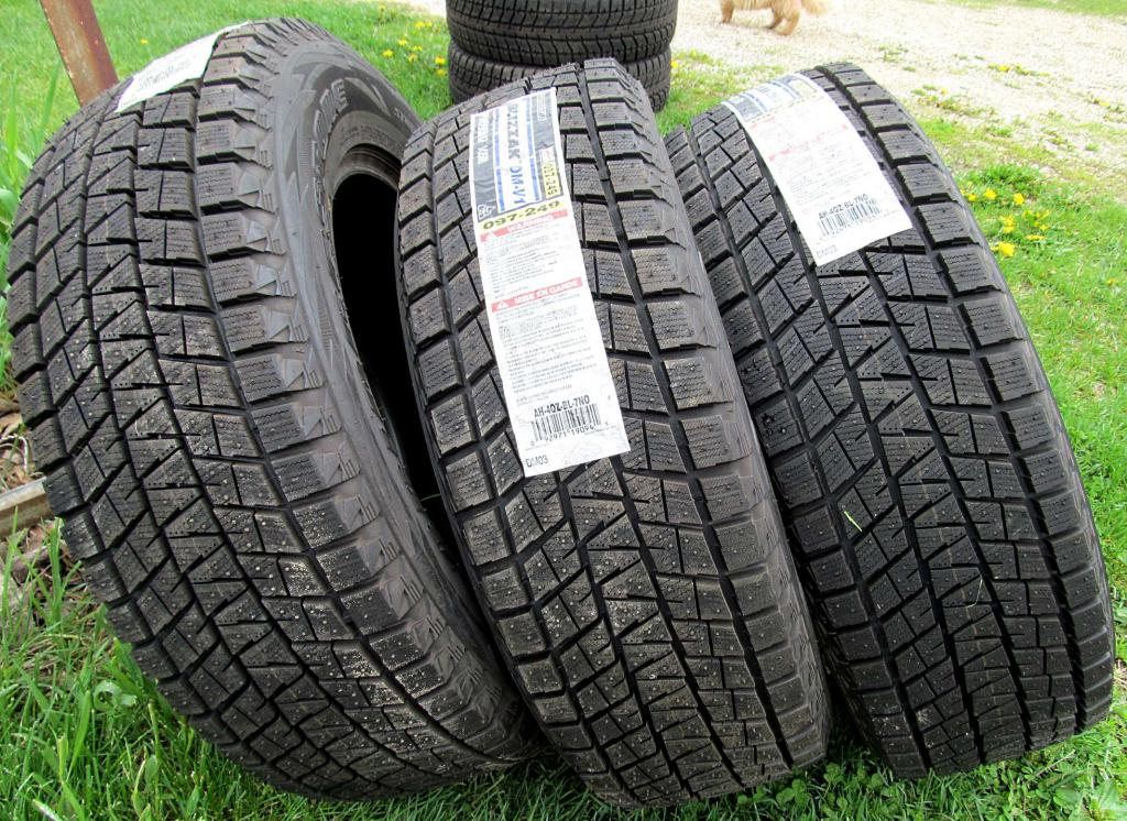 Шины Bridgestone Blizzak DM-V1