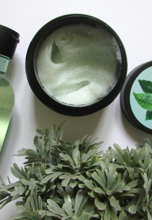Зеленый чай для волос: рецепты использования, полезные свойства, дополнительные ингредиенты, отзывы