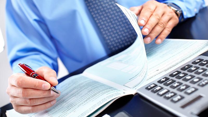 Плательщиками земельного налога являются... Налогообложение, сроки уплаты, размер отчислений