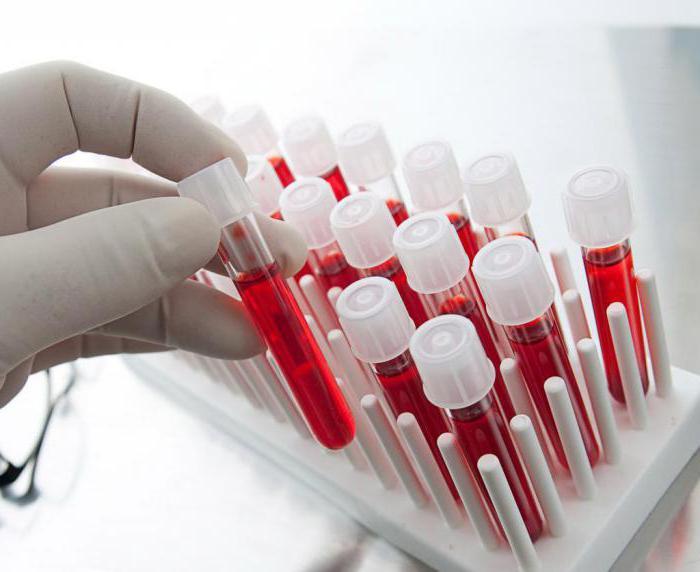 в состав гемоглобина входит