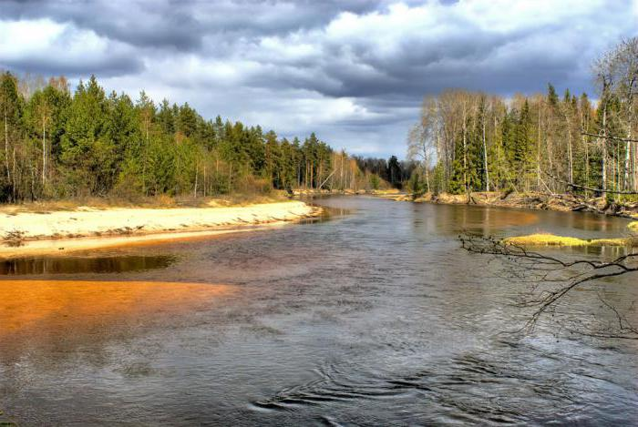 Притоки реки Кострома