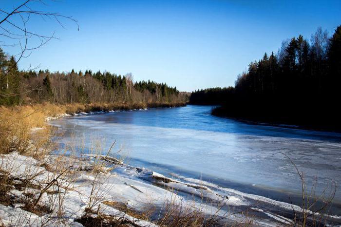 Верхнее течение реки Кострома