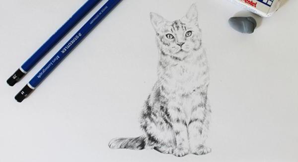 Картины простым карандашом