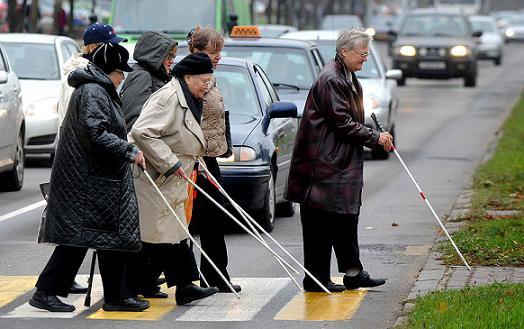 13 ноября международный день слепых символ