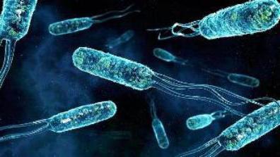 Микробы под ногтями под микроскопом