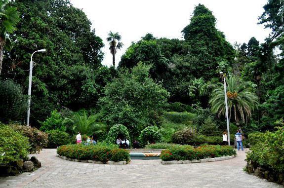 Ботанический сад часы работы