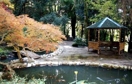 Ботанический сад Батуми на карте