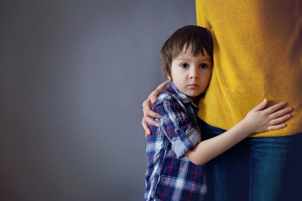 Определение места жительства ребенка в судебном процессе