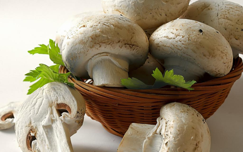 Mushrooms from the store