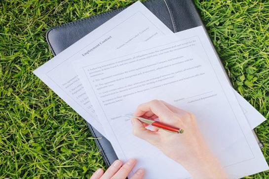 Оформление прав на земельные участки: порядок и документы