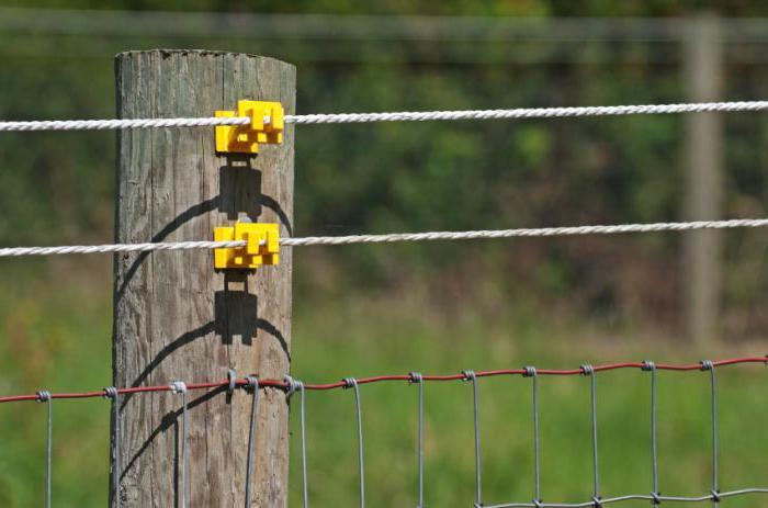 Электропастух для своими руками 943