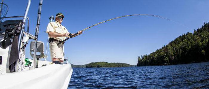 самодельный барометр для рыбалки