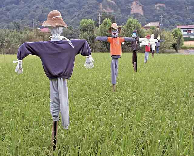 do-it-yourself scarecrow