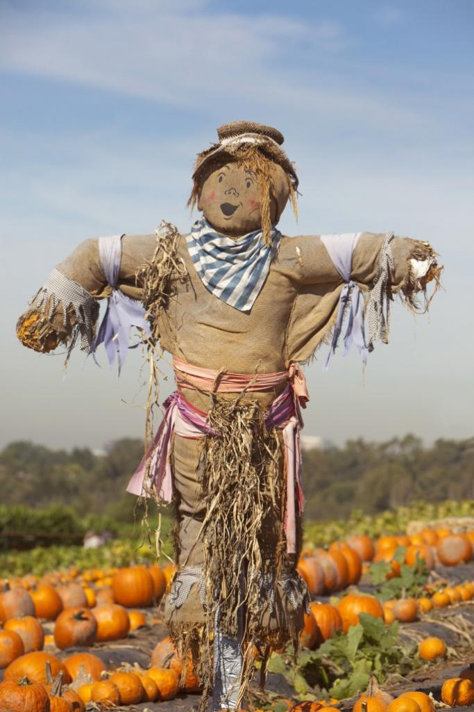scarecrow made of natural materials