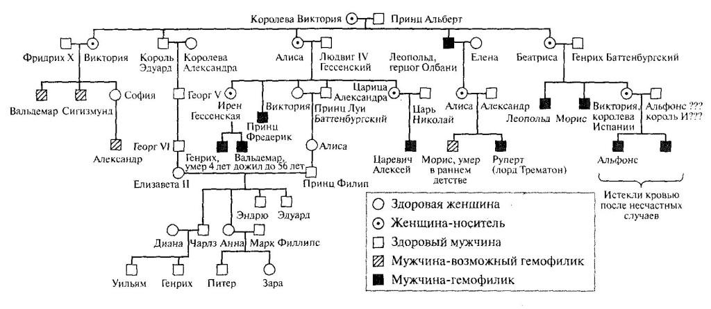 Генеалогическое древо королевы Виктории