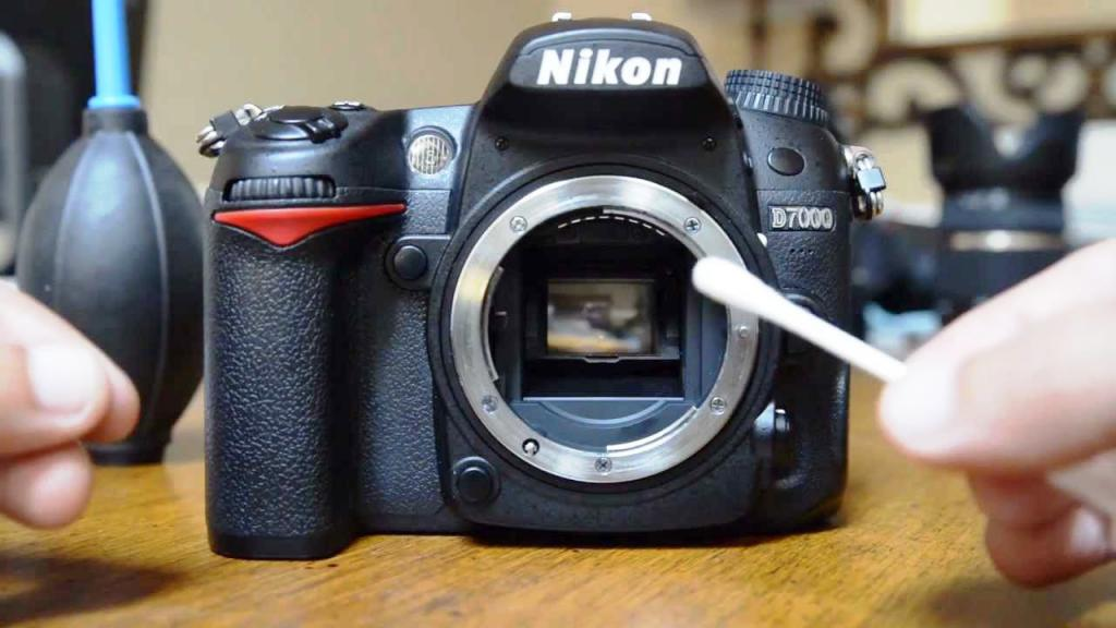 коллекций имеет зачем нужны зеркала в фотоаппарате бесподобные образы модными