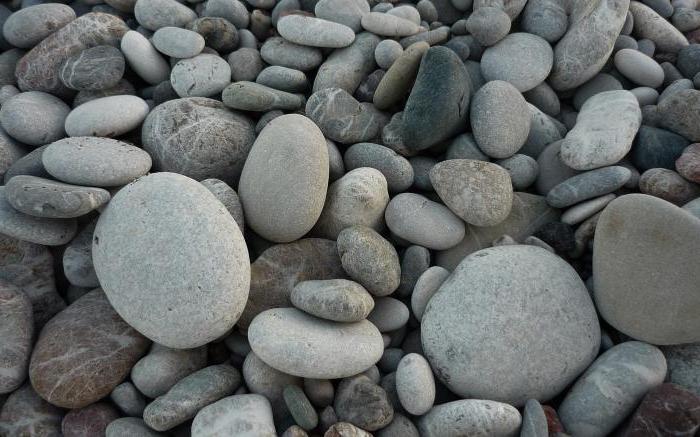 виды морских камней