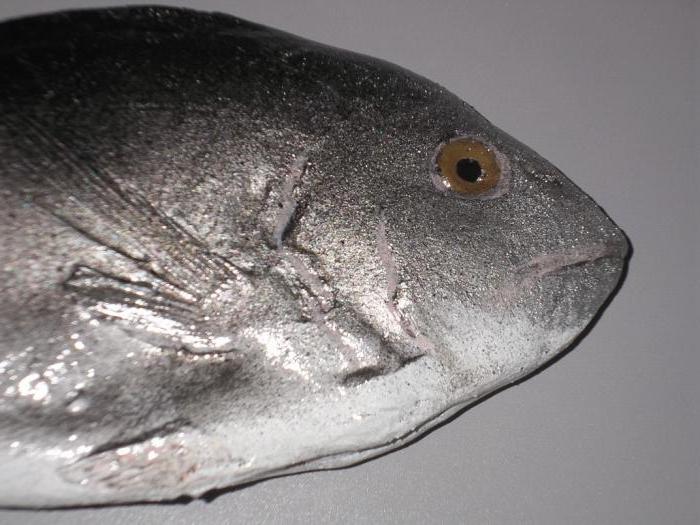 Чучело рыбы своими руками